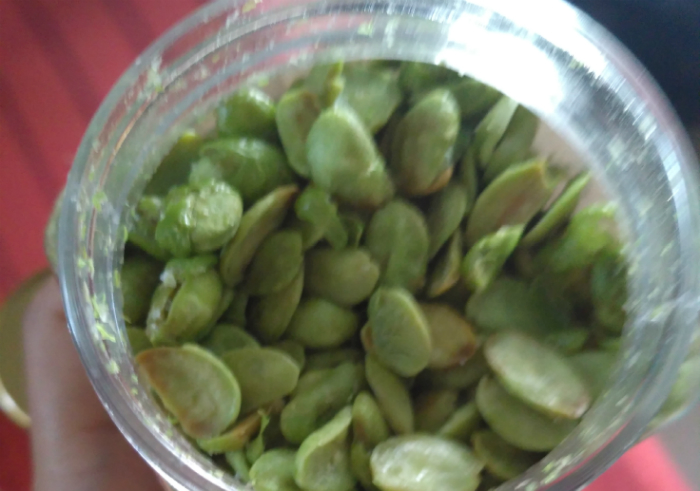 Review-greenerie-bites-edamame-crunchy-beans-15