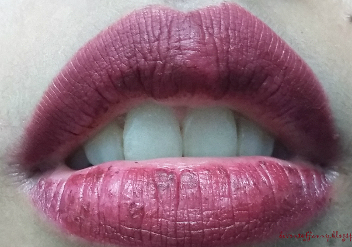 Review-nyx-soft-matte-lip-cream-copenhagen-14