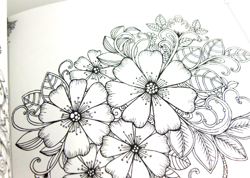 review gratis Adult Coloring Book Flowers