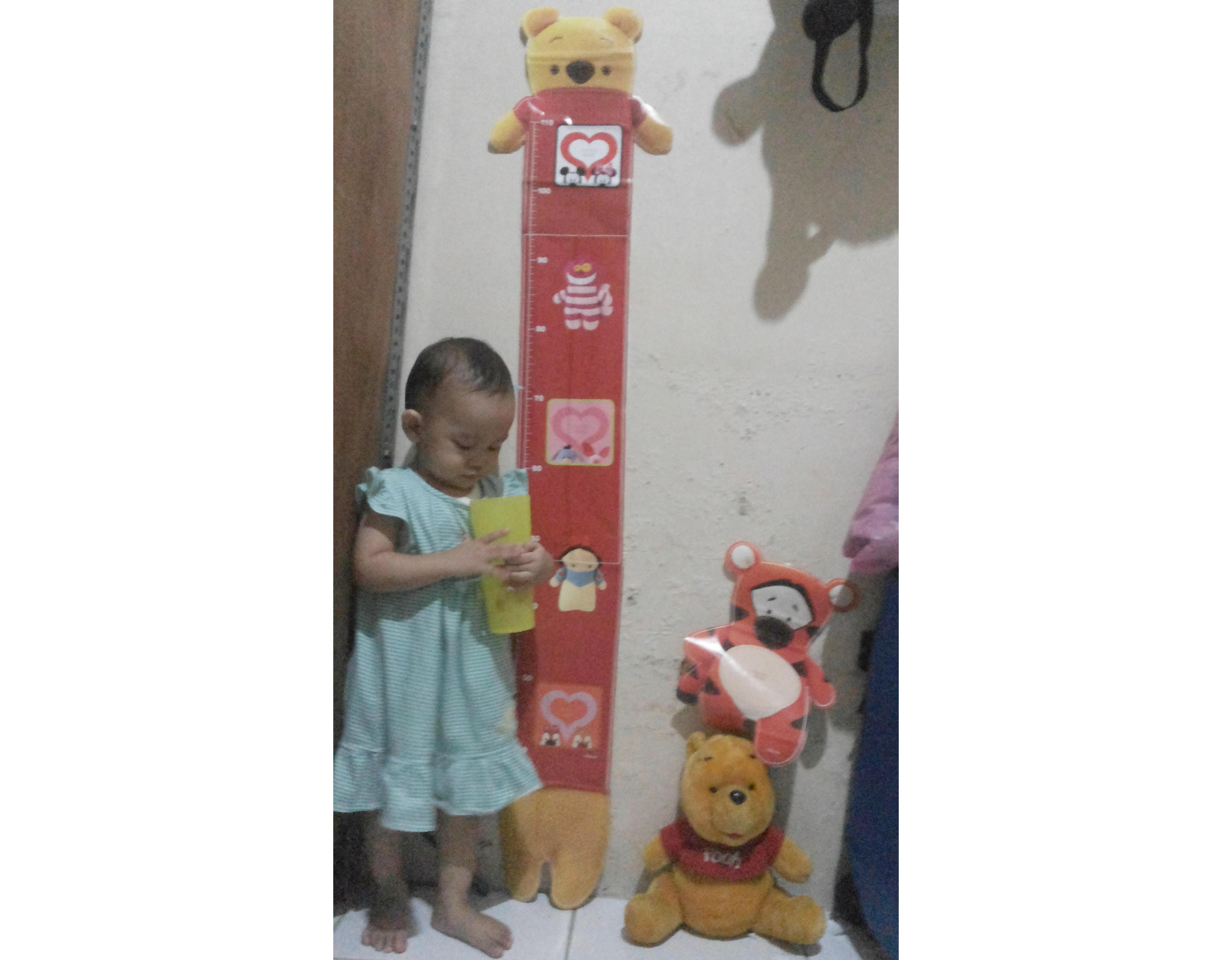 gambar review ke-1 untuk Stiker Dinding Tall Pooh Interior DIY